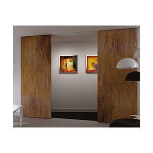 סט לדלת בניין תלויה עם מעצור ובולם, EVOLUTION_מנגנוני הזזה לדלת בניין-596